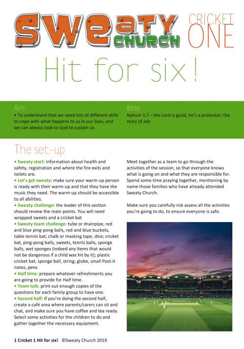 Cricket 1: Hit for six