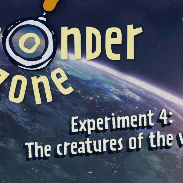 Experiment 4: The creatures of the world