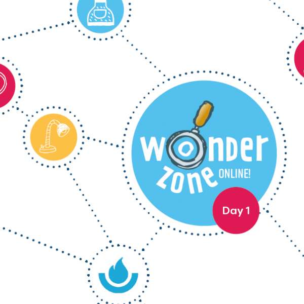 Wonder Zone Online Day 1